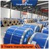 bobina de la hoja de acero de 201 304 Stainnless hecha en la muestra libre de China ofrecida