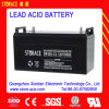 12V 100ah UPS/AGM Battery Suplier van Storage SMF