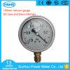 mesure de vide en laiton de pétrole de glycérine de silicones d'Internals de cas de 100mm solides solubles