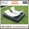 Напольный салон ротанга Lounges/фаэтона (SC-B9510)