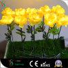 Realistische preiswerte künstliche Blumen, die für Hauptdekoration bilden