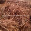 Cobre de cobre barato de la chatarra de la venta al por mayor del desecho