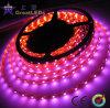 Tira impermeable del LED (GRFT1000-60X 3528)