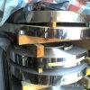 Tiras expertas del acero inoxidable del fabricante (AISI316L)