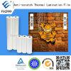 Anti pellicola di protezione della graffiatura per la laminazione calda