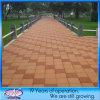Water Permeable poco costoso Brick Paving Stone per il giardino, Landscape, Driveway
