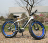 La bicicletta elettrica della montagna marca a caldo l'attrezzo grasso della bici del pneumatico motorino elettrico del ciclomotore