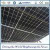 Doppi comitati solari di vetro con il prezzo competitivo