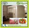Matériel de légumes/matériel surgélation