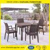 庭の家具の藤が付いているプラスチック余暇の椅子は模倣する