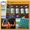 A hormona esteróide do crescimento humano Hy-Começ Kig para o edifício 191AA do músculo