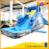 Glissière d'eau d'Infltable de dauphin avec la piscine (AQ1079)