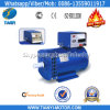 Fabbrica Sale 240V 230V Alternator Generator