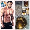 Build Muscles 99% Purity Steroids Powder Trenbolone Acetate 10161-34-9