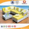 Garten-Aufenthaltsraum-aus Weiden geflochtene im Freienmöbel (UL-A6066)