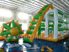 Use comercial Inflatable Water Games para Water Park (CY-M2739)