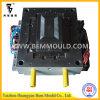 플라스틱 냉장고의 야채 보전실 Mould/Mold (J400100)