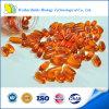 Lécithine Softgel de soja de supplément diététique de qualité