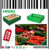 Supermercato Collapsible Fruits e Vegetables Crates