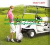 アルミニウムシャーシ2のシートの電気ゴルフカート