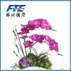 プラスチックの卸売の市場の美しい人工花