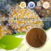 Bromelina dell'estratto dell'ananas di supplemento di Nautural