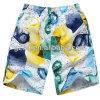다채로운 간결, 수영해 남자 (003)