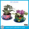 Plantadores novos do Teacup do potenciômetro de flor da vida