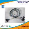 Harnais de câblage domestique de câble équipé de véhicule électrique de harnais de fil d'automobile