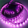 Flexibles 12V LED Rope Light mit 3 Years Warranty