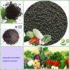 zeewier biologische organische meststof voor de organische landbouw
