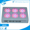 NOVA S6 Modular 204W LED Grow Light Factory
