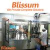 Machine/machines/ligne/usine/système/équipement de petite capacité de production de boisson de gaz
