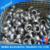 Lo standard di Asme del acciaio al carbonio A105 convoglia Threadolet