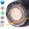 6 / 10kv XLPE Isolated Power Cable