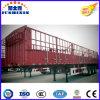 Semitrailers científicos da estaca da parede lateral do transporte do camião do projeto na venda