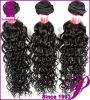 Волосы людской ранга продуктов волос девственницы верхней Unprocessed индийские