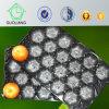 Oberflächeneuropa Standardgröße italienische Markt-populäre Apple-Verpackungmatt-, diejedes Farben-erhältliche Plastikfrucht-Nest-Tellersegment durch FDA genehmigte