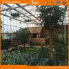 高品質のポリカーボネートの温室の庭の温室