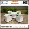 Il tavolino da salotto stabilito del rattan del tavolino da salotto ha impostato/tavolino da salotto di alluminio impostato (SC-B8217)