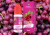 영 니코틴 농도 과일 맛 10ml E 액체
