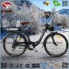 Vélo électrique bon marché de route urbaine du bâti 250W d'alliage