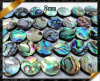 مسطّحة عملة باع بالجملة خرزة, [أبلون] قشرة قذيفة مجوهرات خرزة ([أبس018])