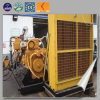 Lhbmg30 Biomass Generator with Silent Cummins Generator From China Factory