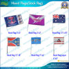 Polyester Eco-Friendly Hand Flag com Plastic Pólo (*NF01F03013) Polyester