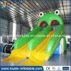Combo gonflable gonflable commercial de glissière d'eau de modèle neuf à vendre
