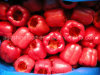 Gefrorener roter Grüner Pfeffer