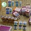 Iniezioni dell'olio & steroide grezzo di Trenbolone Enanthate della polvere