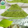 Bestes Selling 80 bis 200 Mesh Barley Grass Powder Organic
