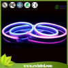 120V Color Changing LED Neon Flex per Building